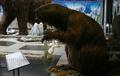 Giant beaver model.png