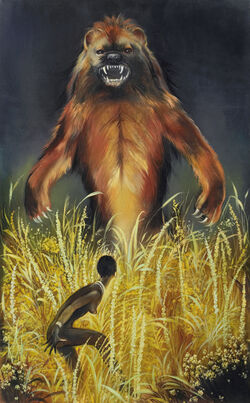 Cover of Les ours insolites d'Afrique
