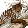 Marsupial Lion by H Kyoht Luterman, FineArtAmerica, CUBED.png