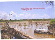 Nueva Tacna incident river