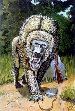 Nandi bear baboon