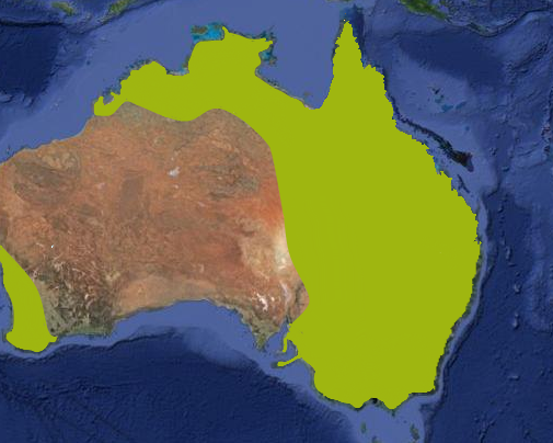 File:Marsupial Lion range.png