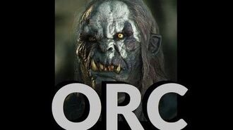 Dungeons and Dragons Lore Orc