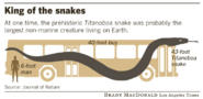 Titanoboa the snake king