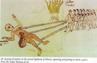 Giant aztec