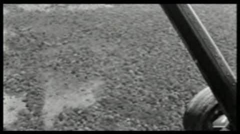 Mokele-mbembe 92 footage-0