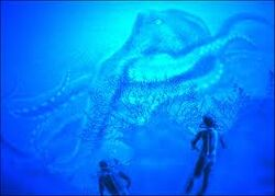 Oklahoma Octopus