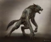 Werewolf drawing artist rendering