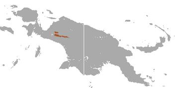Dingiso area
