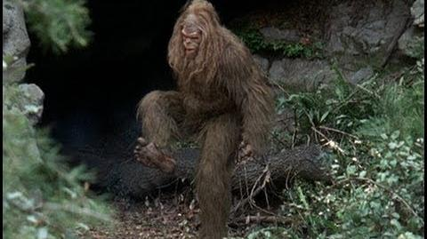 Close Encounters with Bigfoot (Documentary)