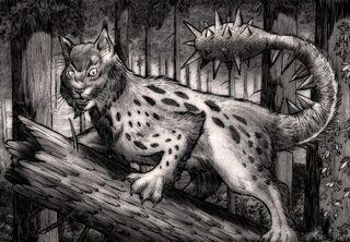 Sliver Cat