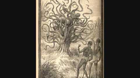 Cryptids and Monsters- The Man-Eating tree