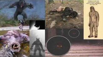 Top 7 Sightings of Wolfmen in Pennsylvania