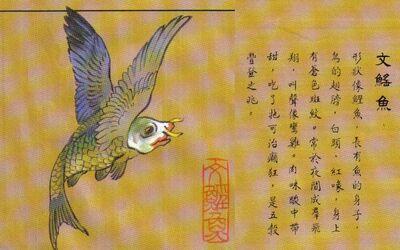 Wenyaoyu