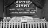 Cardiff giant 3