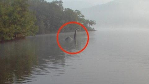 """""""Loch Ness Monster"""" FOUND IN RIVER THAMES * BREAKING NEWS *"""