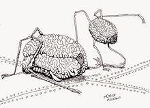 Space Brains of Palos Verdes