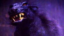 Hellhound-0