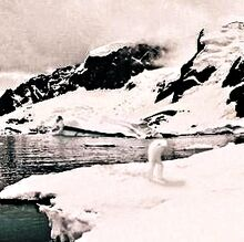 Ningen antarctica 1940 cropped mystery old 2