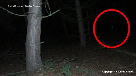Black Eyed Child Ghost Caught on Tape Cannock Chase