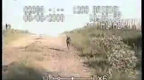 Chupacabra on police camera