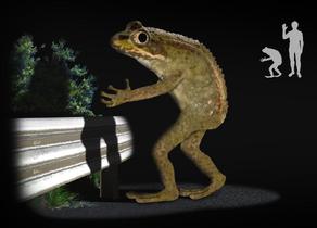 Loveland frogman
