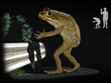 Loveland Frogmen