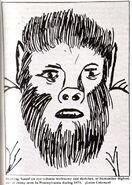 Pennsylvania 1973 human-like bigfoot