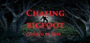 Chasing bigfoot 2016