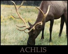 ACHLIS