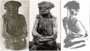 The San Pedro Mountain Mummy