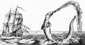 640px-Hans Egede sea serpent 1734-300x158