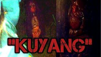 🔴KUYANG TERTANGKAP KI SURYO!! INI LAH WUJUD KUYANG JARAK TERDEKAT!!