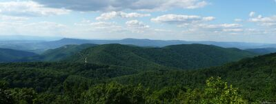 Appalachian Mountains I