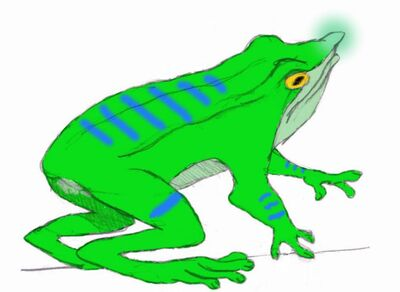 Flashlight frog by themorlock-d2xuyir