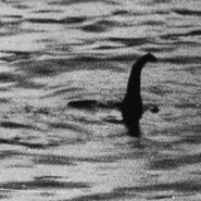 Loch-ness-monster 1466828i