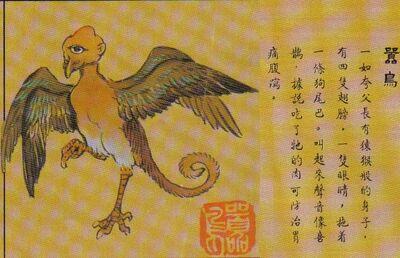 Xiaoniao