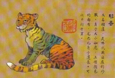 Zhuwu