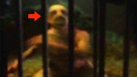20 CREEPY Unknown Creatures Caught on Tape