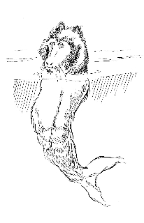 Steller's sea ape 2