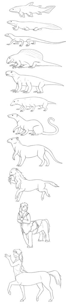 Origin Evolution of Centaurs 2.
