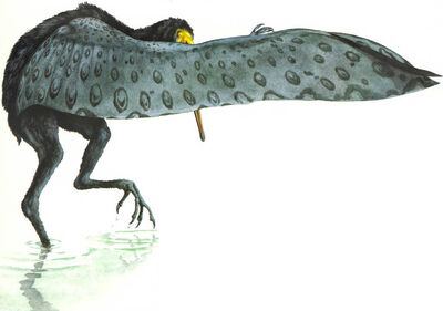Specpterosaur