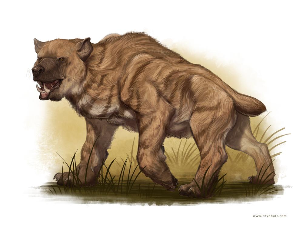 Bear beast monster