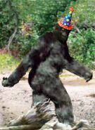 Bigfoot-0