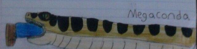 File:Megaconda Doodle.jpg