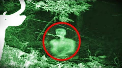 5 Terrifying WENDIGO Sightings Caught on Camera