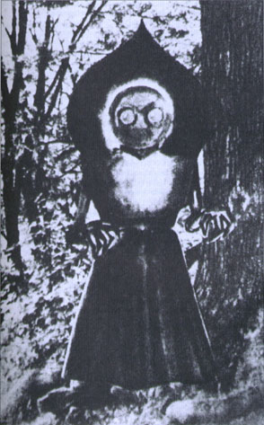 Image result for The Flatwoods Monster