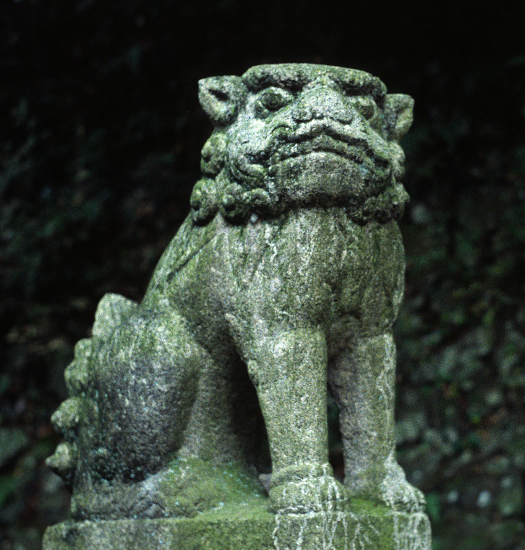 Fu lion dogs cryptid wiki fandom powered by wikia komainu in japanese buddhism biocorpaavc Choice Image