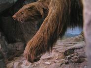 Giant sloth2