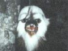 Abbagoochie